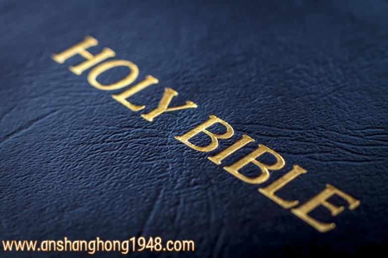 圣经1(anshanghong1948)
